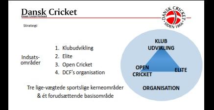 3+1fokus.CricketForAlle
