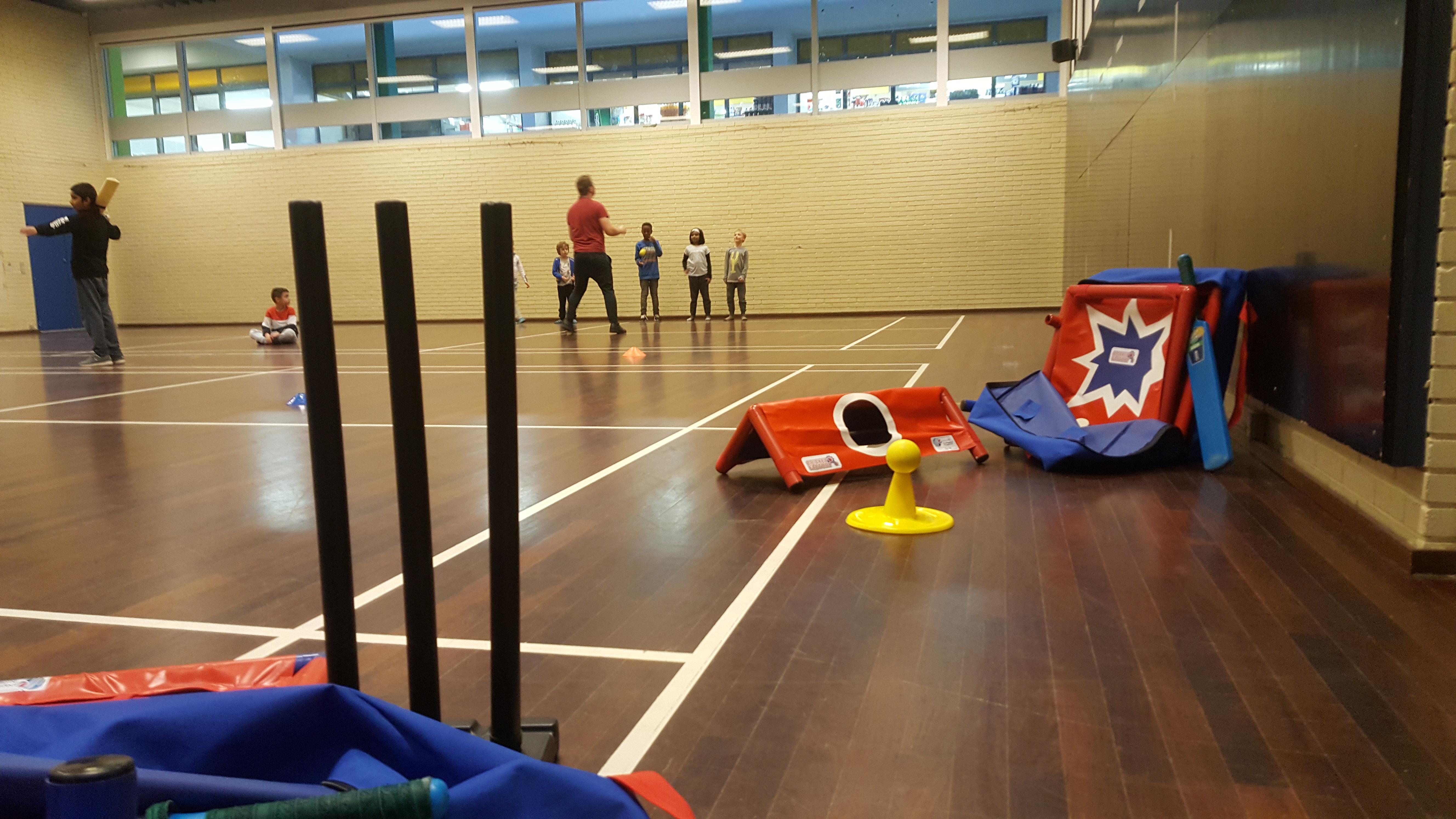Hvorfor virker indendørs cricket?